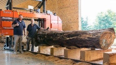 Farming and Sawing Live Edge Slabs in Indiana