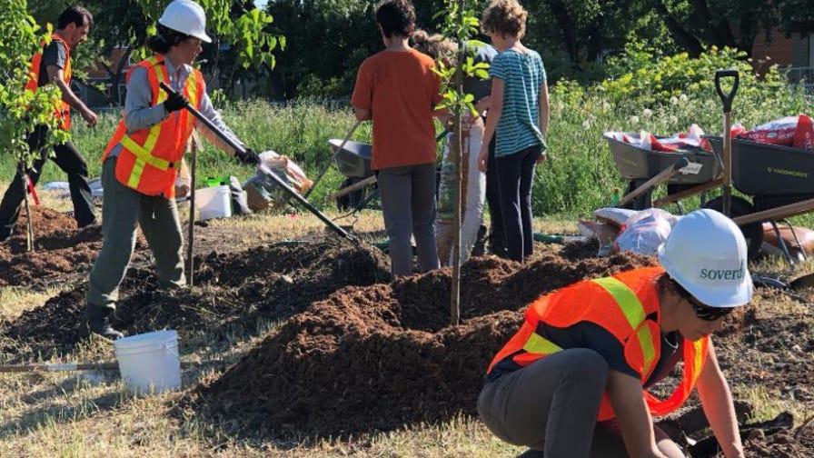 Tree Canada volunteers