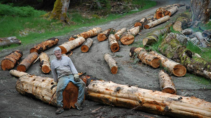 Mike Collier Logs