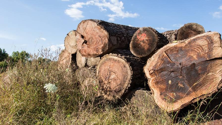 Hood Farms Logs