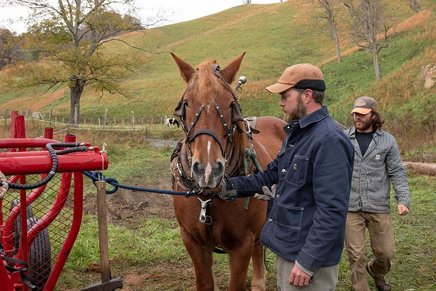 Mountain Works owners with horse used for sustainable horse logging