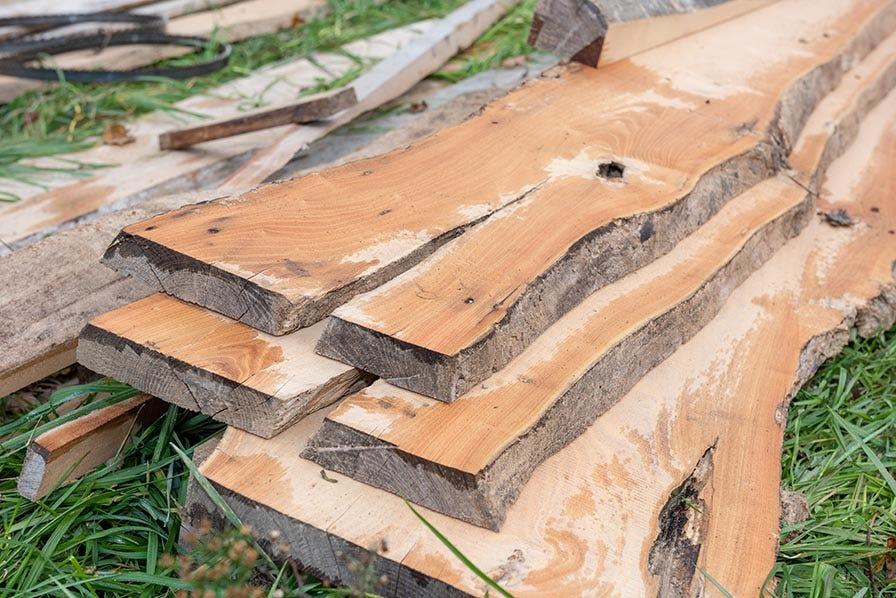 Crotched wood slabs cut on Wood-Mizer sawmill