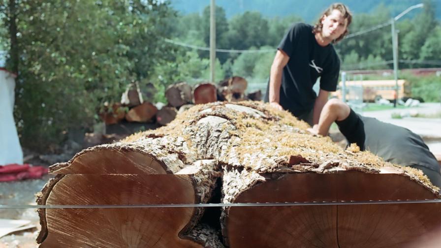Crotched wood cut on Wood-Mizer sawmill